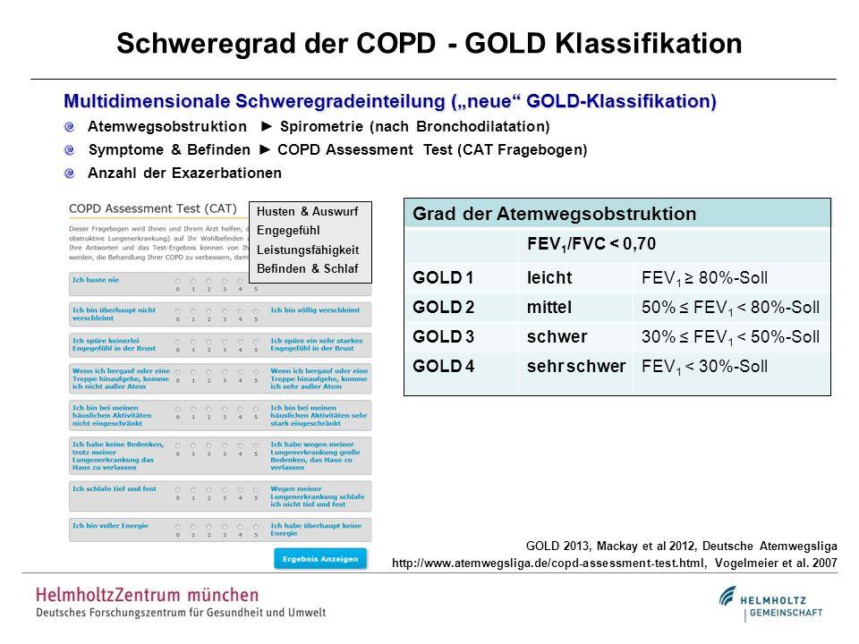 Schweregrad der COPD - GOLD Klassifikation GOLD 2013, Mackay et al 2012, Deutsche Atemwegsliga http://www.atemwegsliga.de/copd-assessment-test.html, V