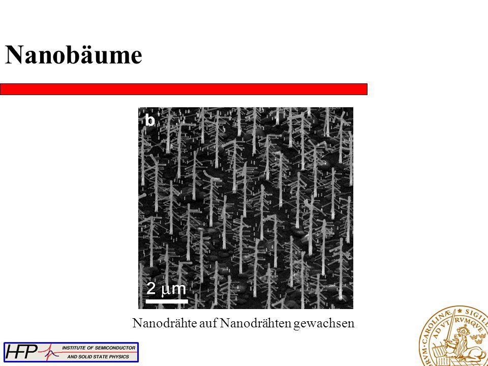 Nanodrähte auf Nanodrähten gewachsen Nanobäume