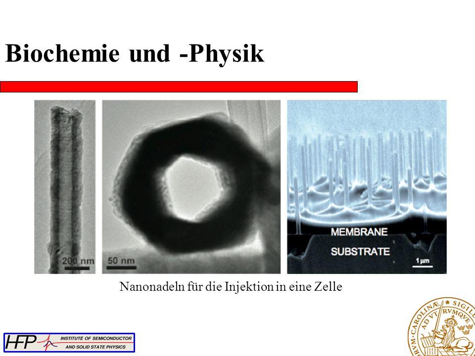 Nanonadeln für die Injektion in eine Zelle Biochemie und -Physik