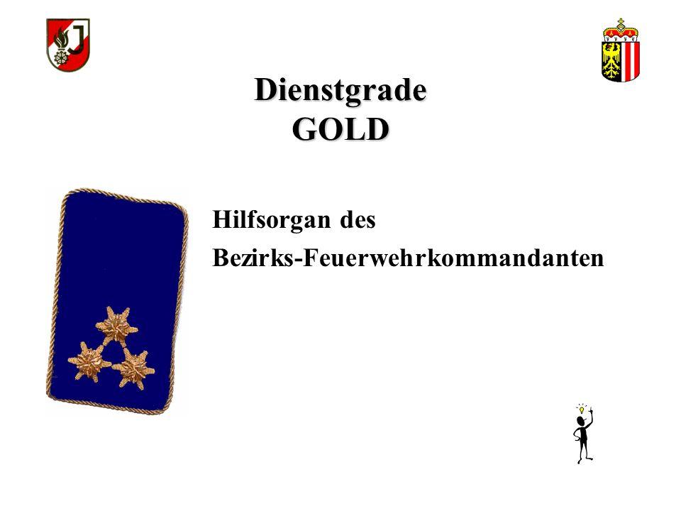 Dienstgrade GOLD Hilfsorgan des Abschnitts- Feuerwehrkommandanten
