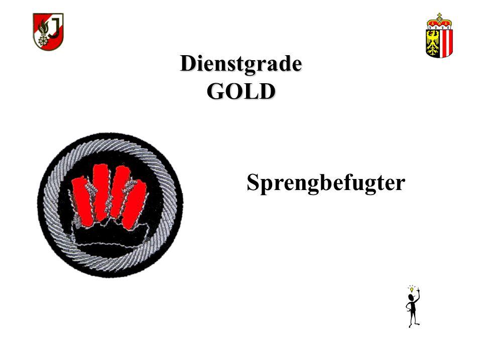 Dienstgrade GOLD Feuerwehrsanitäter