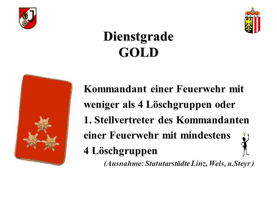 Dienstgrade GOLD Stellvertreter des Kommandanten einer Feuerwehr mit weniger als 4 Löschgruppen oder 2. Stellvertreter des Kommandanten einer Feuerweh