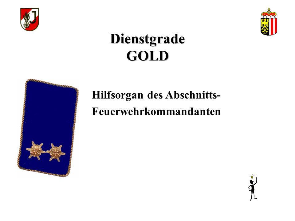 Dienstgrade GOLD Jugendbetreuer & Jugendhelfer