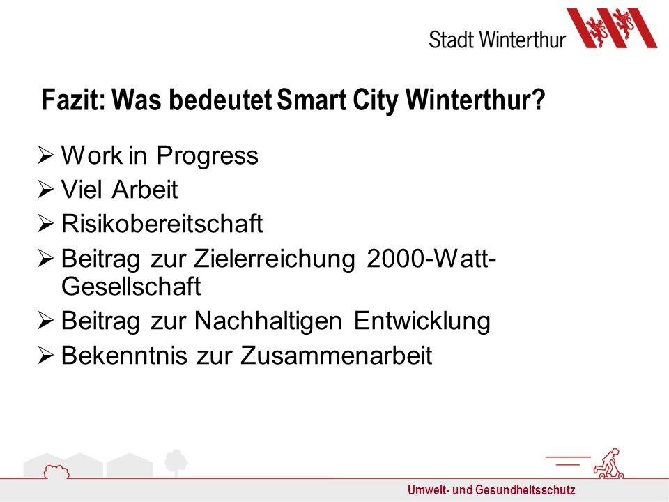 Umwelt- und Gesundheitsschutz Fazit: Was bedeutet Smart City Winterthur? Work in Progress Viel Arbeit Risikobereitschaft Beitrag zur Zielerreichung 20