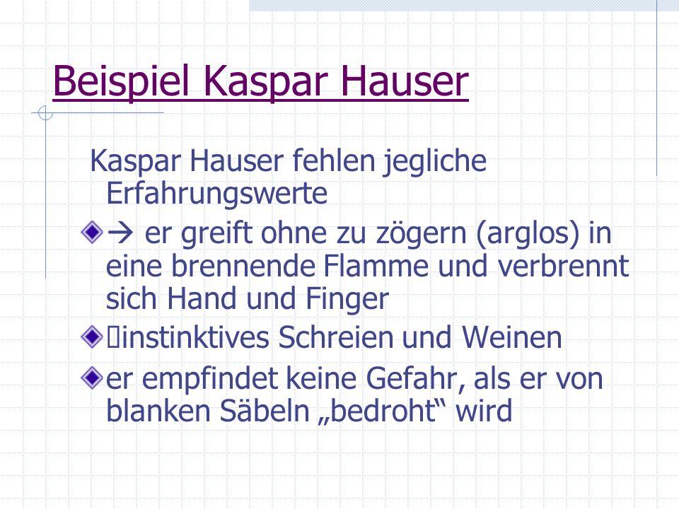 Beispiel Kaspar Hauser Kaspar Hauser fehlen jegliche Erfahrungswerte er greift ohne zu zögern (arglos) in eine brennende Flamme und verbrennt sich Han