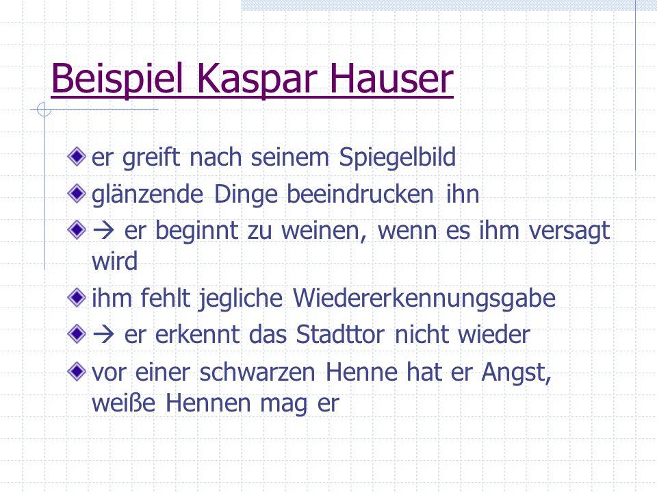 Beispiel Kaspar Hauser er greift nach seinem Spiegelbild glänzende Dinge beeindrucken ihn er beginnt zu weinen, wenn es ihm versagt wird ihm fehlt jeg