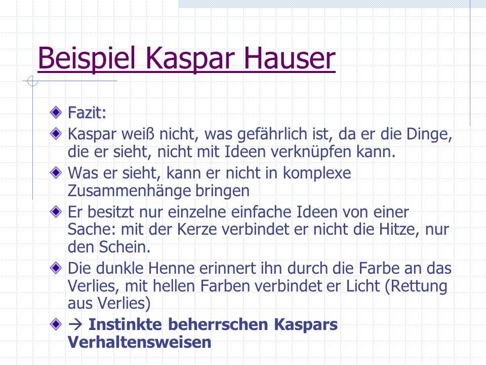 Beispiel Kaspar Hauser Fazit: Kaspar weiß nicht, was gefährlich ist, da er die Dinge, die er sieht, nicht mit Ideen verknüpfen kann. Was er sieht, kan