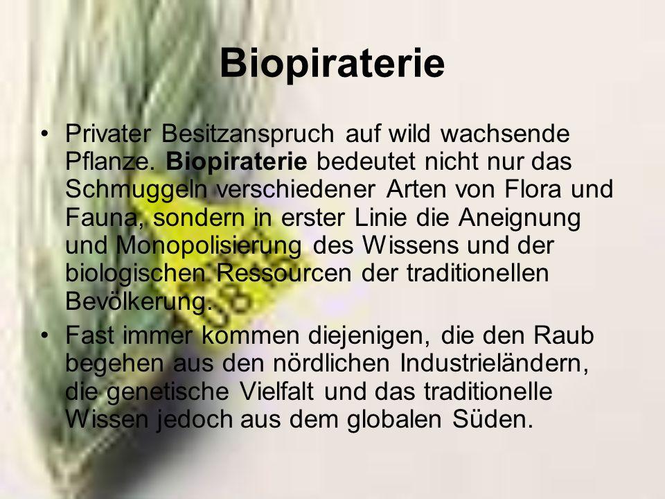 Jede mögliche Form des geistigen Eigentums auf Biodiversität und traditionellem Wissen sollte verboten werden.
