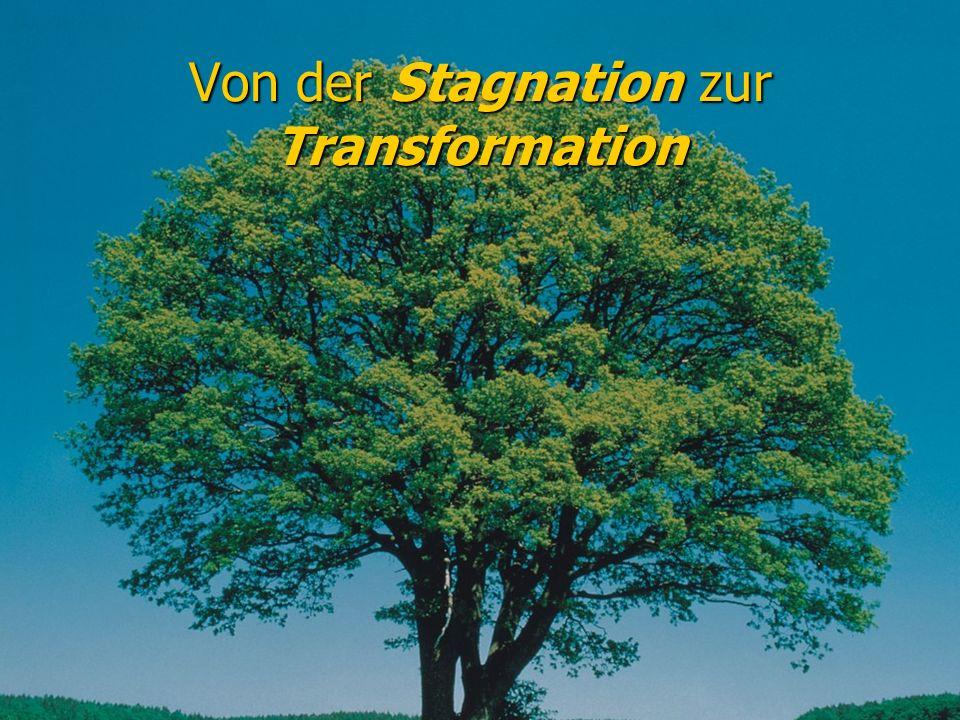 Von der Stagnation zur Transformation