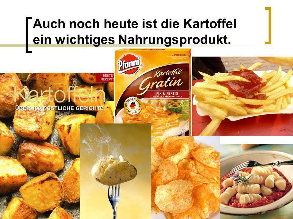 Auch noch heute ist die Kartoffel ein wichtiges Nahrungsprodukt.