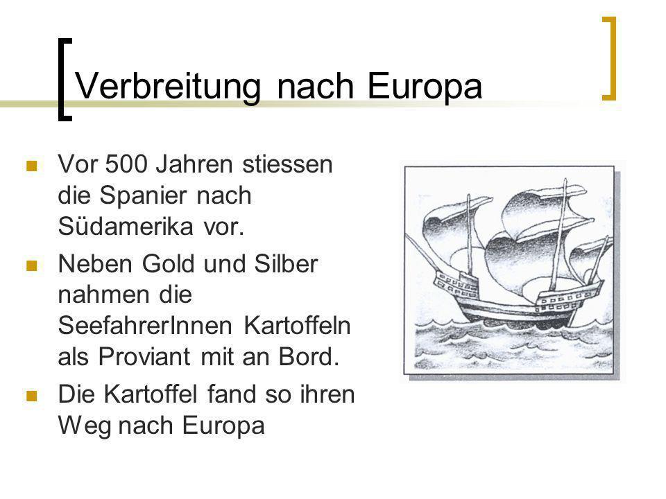 Verbreitung nach Europa Vor 500 Jahren stiessen die Spanier nach Südamerika vor. Neben Gold und Silber nahmen die SeefahrerInnen Kartoffeln als Provia