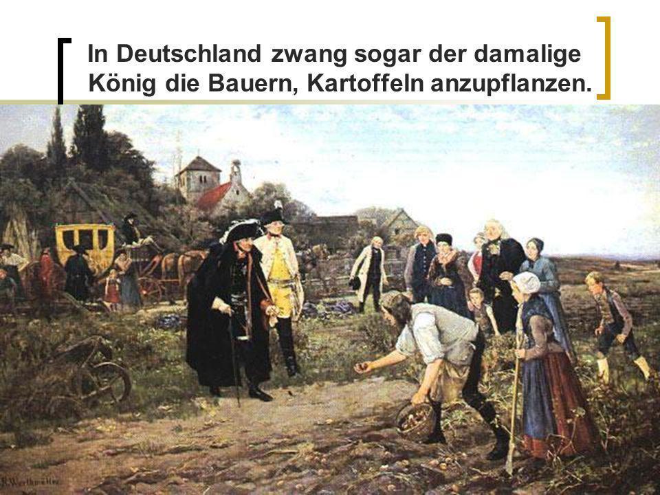 In Deutschland zwang sogar der damalige König die Bauern, Kartoffeln anzupflanzen.