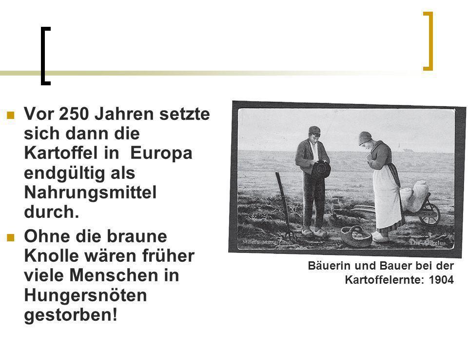 Vor 250 Jahren setzte sich dann die Kartoffel in Europa endgültig als Nahrungsmittel durch. Ohne die braune Knolle wären früher viele Menschen in Hung