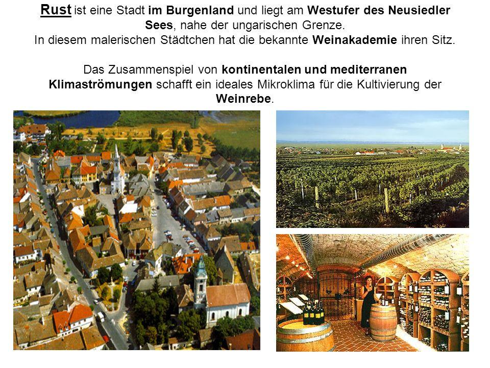 Rust ist eine Stadt im Burgenland und liegt am Westufer des Neusiedler Sees, nahe der ungarischen Grenze. In diesem malerischen Städtchen hat die beka