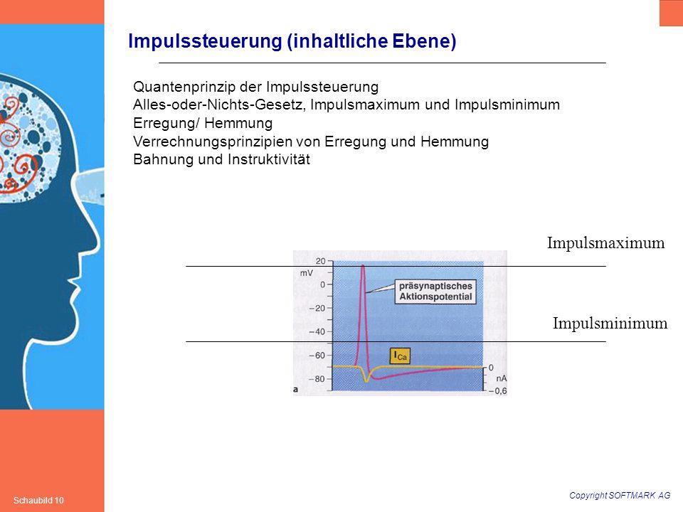 Copyright SOFTMARK AG Schaubild 10 Impulssteuerung (inhaltliche Ebene) Quantenprinzip der Impulssteuerung Alles-oder-Nichts-Gesetz, Impulsmaximum und