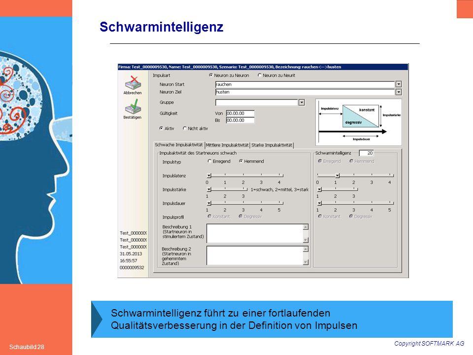Copyright SOFTMARK AG Schaubild 28 Schwarmintelligenz Schwarmintelligenz führt zu einer fortlaufenden Qualitätsverbesserung in der Definition von Impu