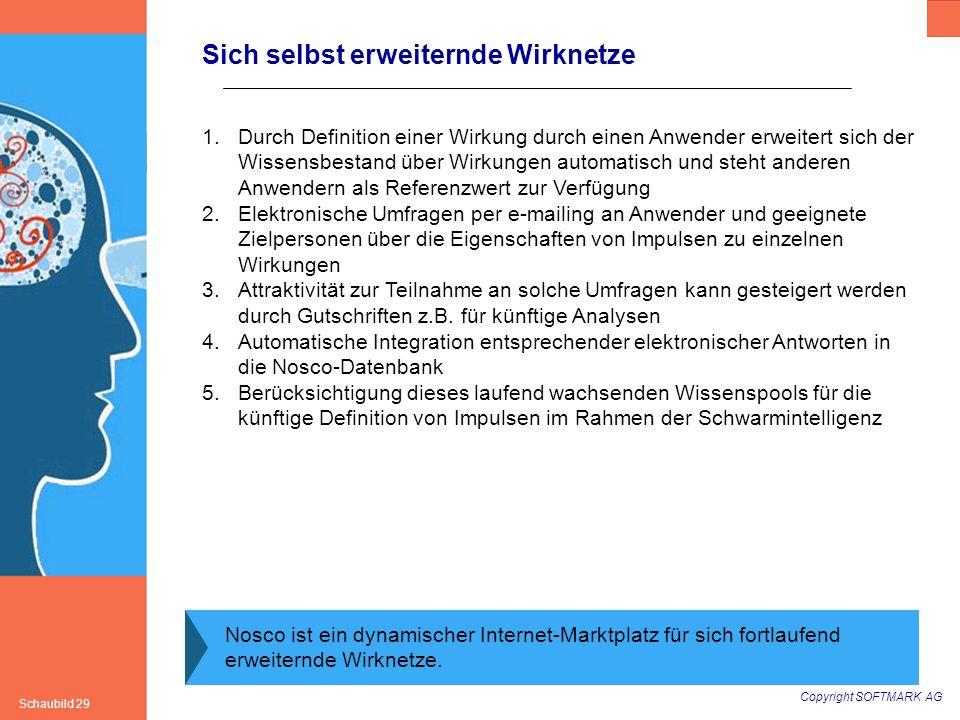 Copyright SOFTMARK AG Schaubild 29 Sich selbst erweiternde Wirknetze Nosco ist ein dynamischer Internet-Marktplatz für sich fortlaufend erweiternde Wi