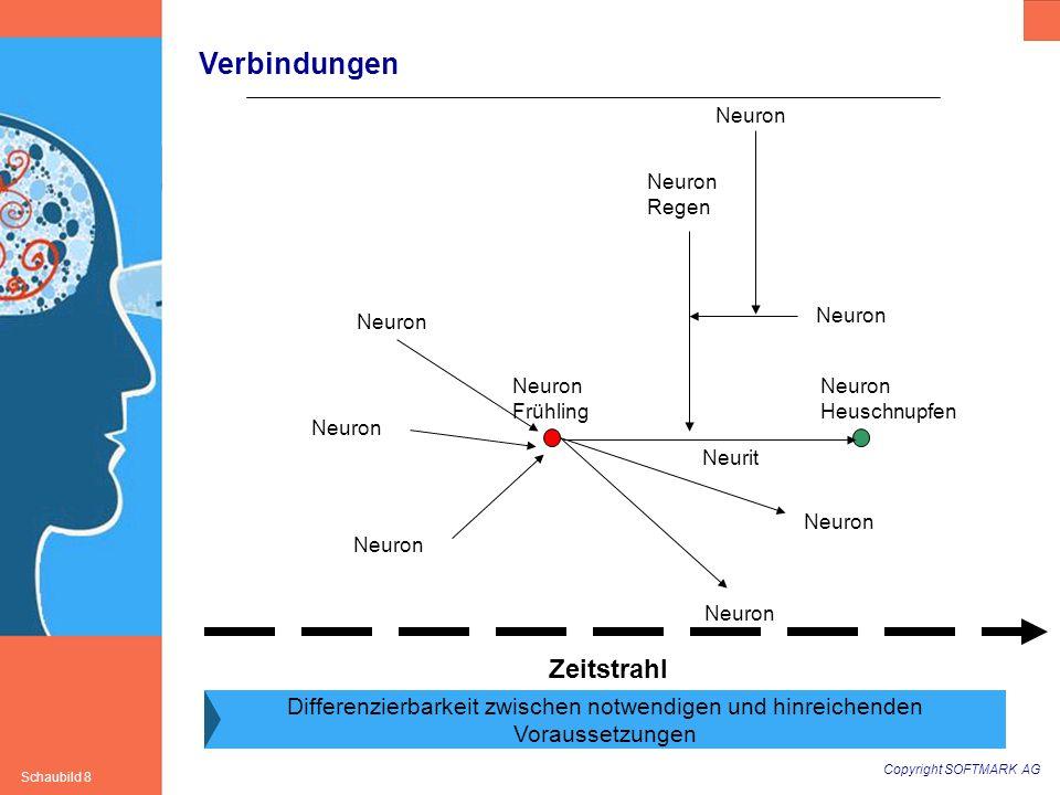 Copyright SOFTMARK AG Schaubild 8 Verbindungen Neuron Frühling Neuron Heuschnupfen Neuron Zeitstrahl Neuron Neurit Neuron Regen Differenzierbarkeit zw