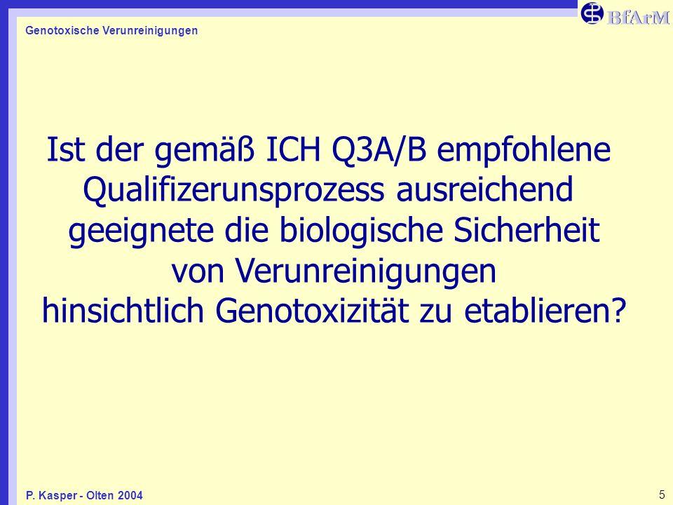 Genotoxische Verunreinigungen 5P. Kasper - Olten 2004 Ist der gemäß ICH Q3A/B empfohlene Qualifizerunsprozess ausreichend geeignete die biologische Si