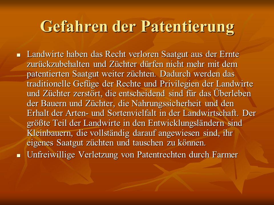 Gefahren der Patentierung Landwirte haben das Recht verloren Saatgut aus der Ernte zurückzubehalten und Züchter dürfen nicht mehr mit dem patentierten