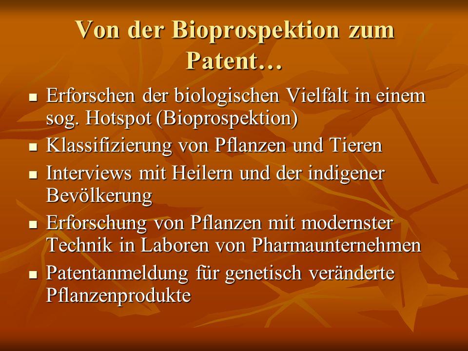 Von der Bioprospektion zum Patent… Erforschen der biologischen Vielfalt in einem sog. Hotspot (Bioprospektion) Erforschen der biologischen Vielfalt in