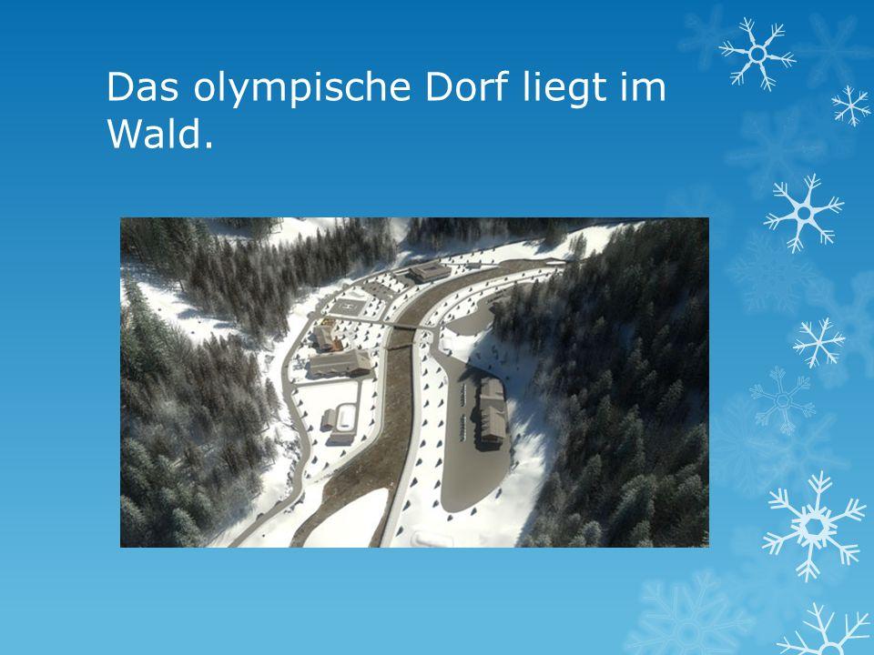 Das olympische Dorf liegt im Wald.