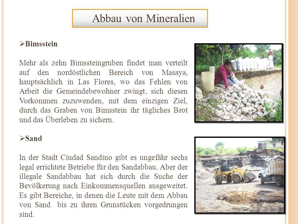 Abbau von Mineralien Bimsstein Mehr als zehn Bimssteingruben findet man verteilt auf den nordöstlichen Bereich von Masaya, hauptsächlich in Las Flores