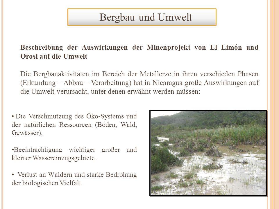 Bergbau und Umwelt Beschreibung der Auswirkungen der Minenprojekt von El Limón und Orosi auf die Umwelt Die Bergbauaktivitäten im Bereich der Metaller