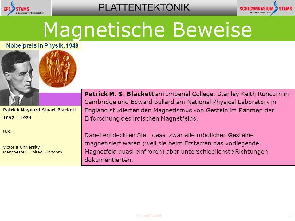 PLATTENTEKTONIK Plattentektonik11 Patrick M.S.