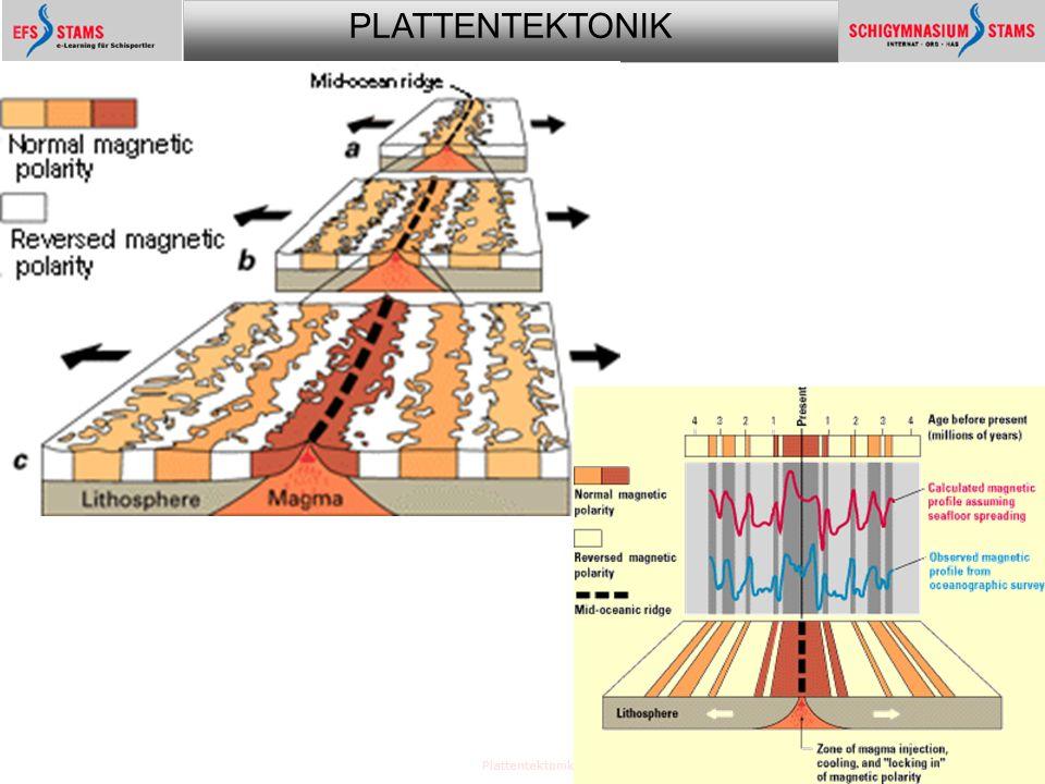 PLATTENTEKTONIK Plattentektonik18