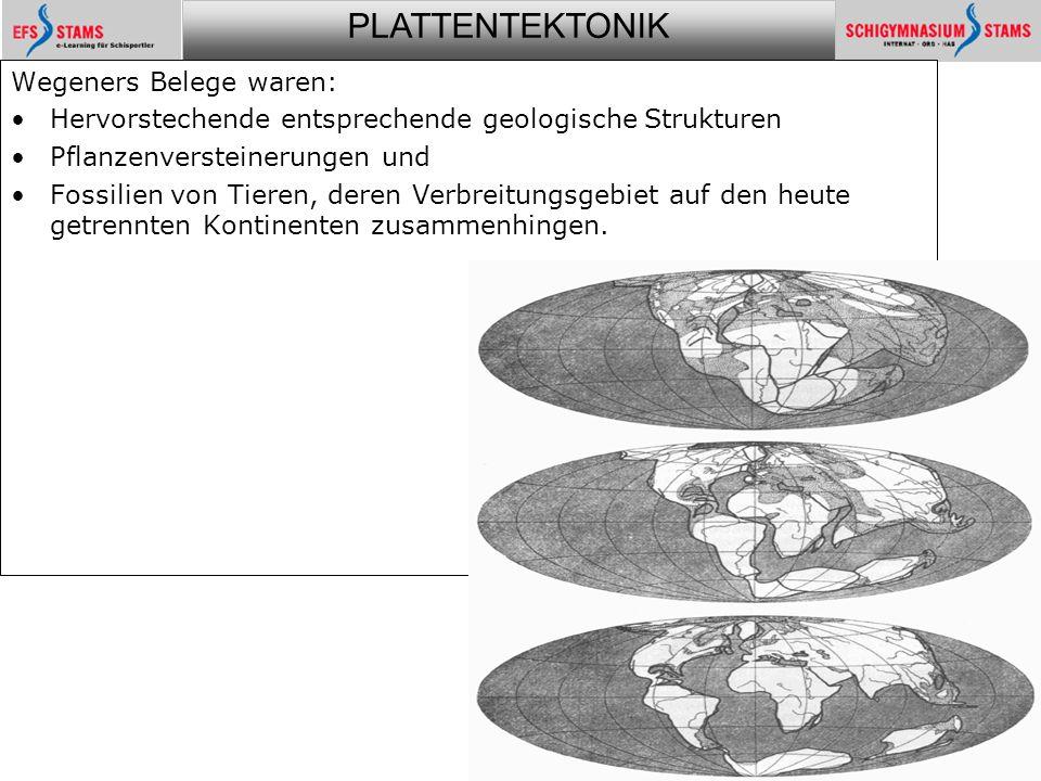 PLATTENTEKTONIK Plattentektonik5 Wegeners Belege waren: Hervorstechende entsprechende geologische Strukturen Pflanzenversteinerungen und Fossilien von Tieren, deren Verbreitungsgebiet auf den heute getrennten Kontinenten zusammenhingen.
