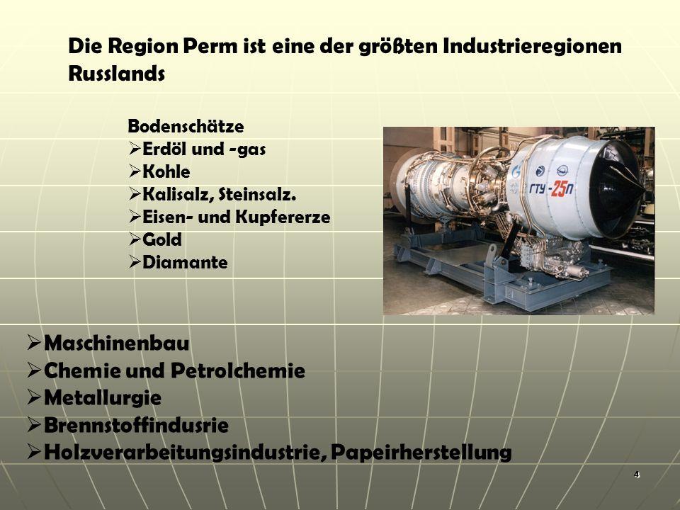 4 Die Region Perm ist eine der größten Industrieregionen Russlands Maschinenbau Chemie und Petrolchemie Metallurgie Brennstoffindusrie Holzverarbeitungsindustrie, Papeirherstellung Bodenschätze Erdöl und -gas Kohle Kalisalz, Steinsalz.