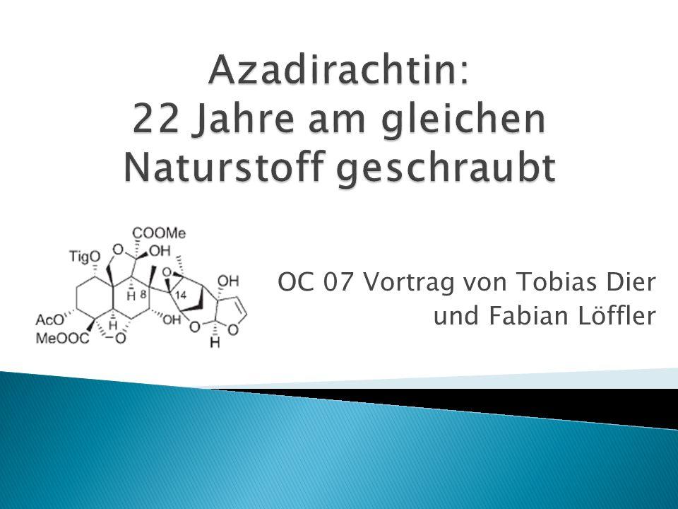 OC 07 Vortrag von Tobias Dier und Fabian Löffler