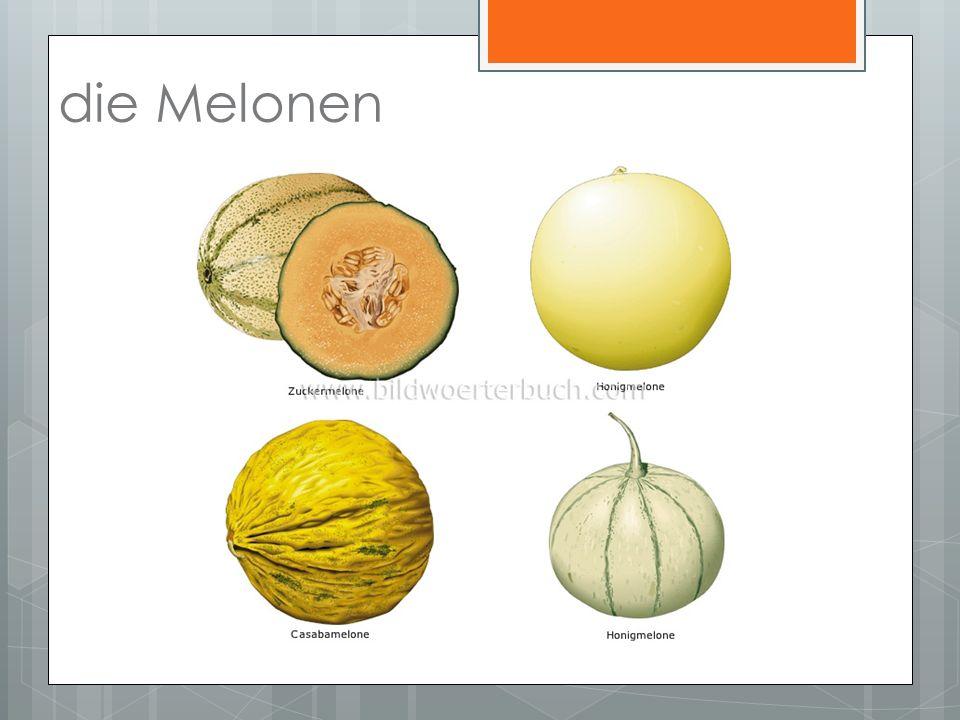 die Melonen
