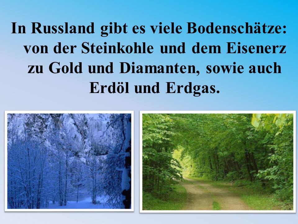 In Russland gibt es viele Bodenschätze: von der Steinkohle und dem Eisenerz zu Gold und Diamanten, sowie auch Erdöl und Erdgas.