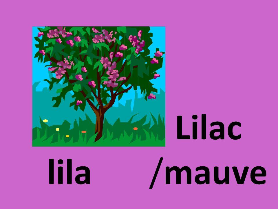 lila Lilac /mauve