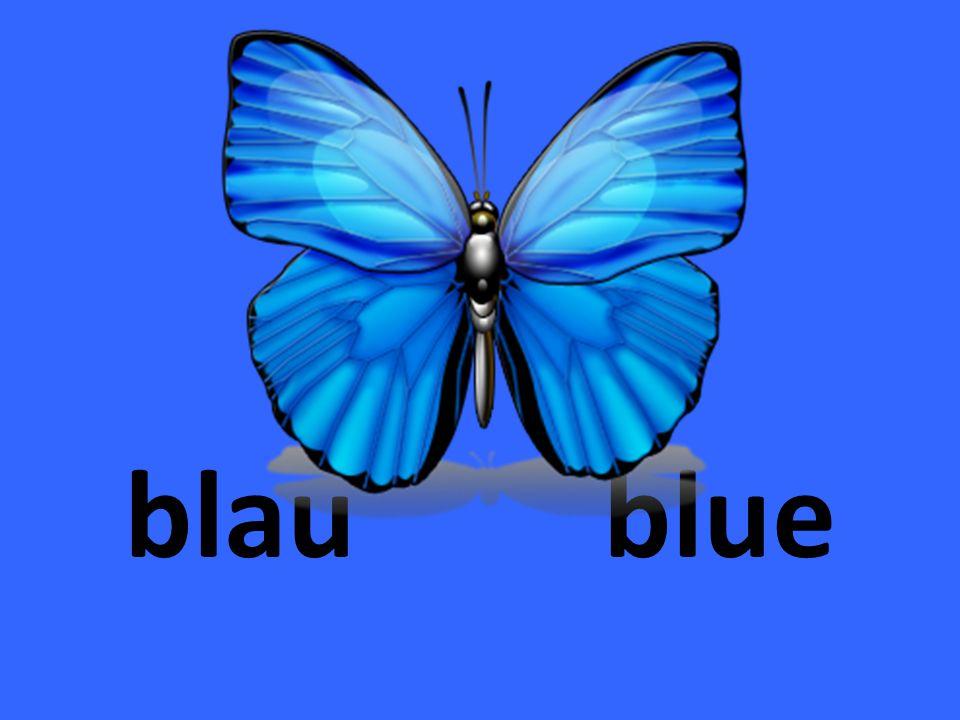 hell- blau light blue