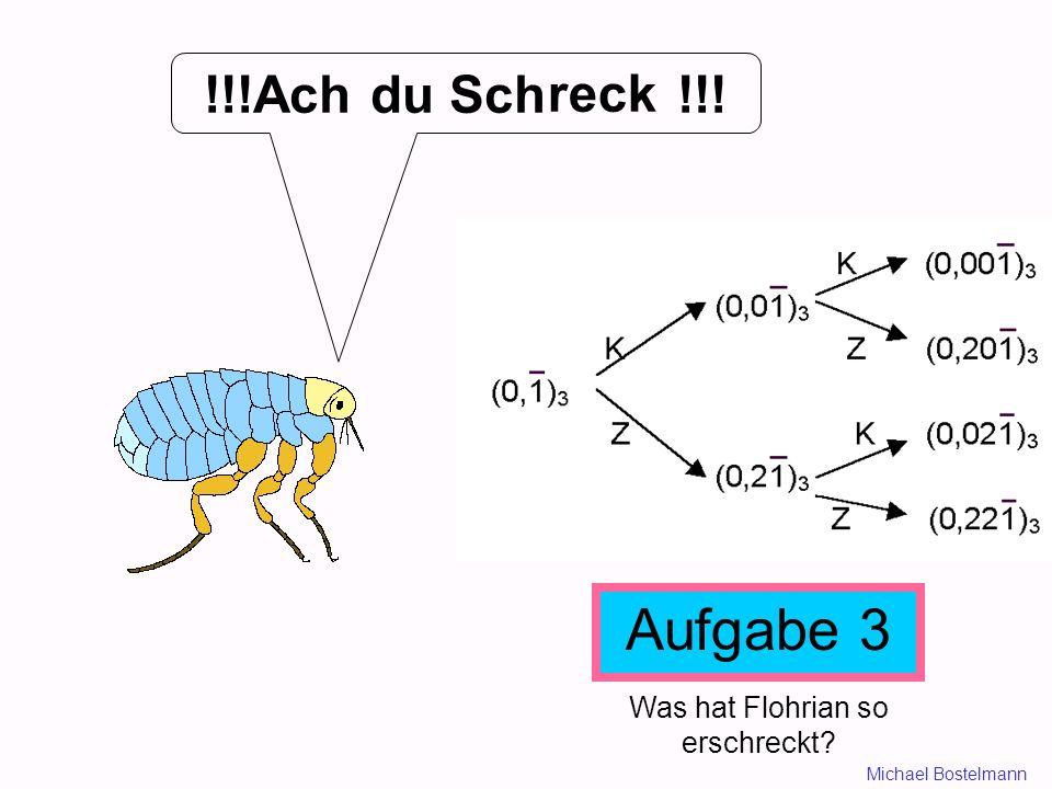 !!!Ach du Sch !!! Aufgabe 3 Was hat Flohrian so erschreckt? reck Michael Bostelmann