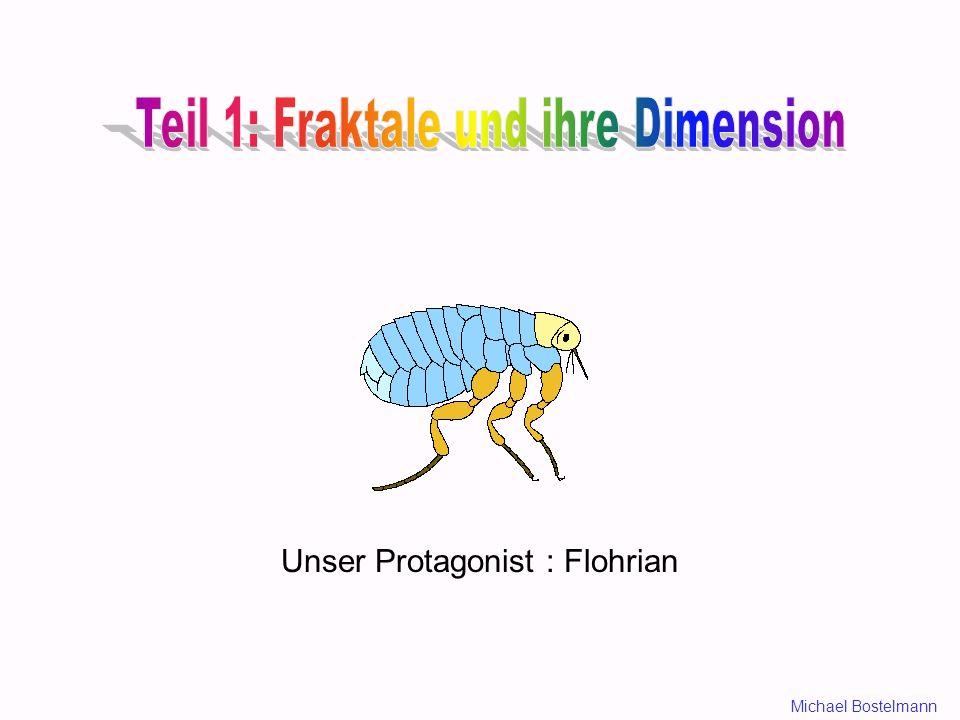 Unser Protagonist : Flohrian Michael Bostelmann