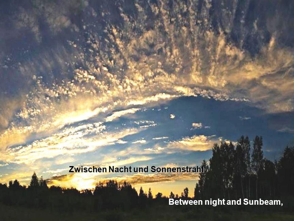 Zwischen Nacht und Sonnenstrahl Between night and Sunbeam,