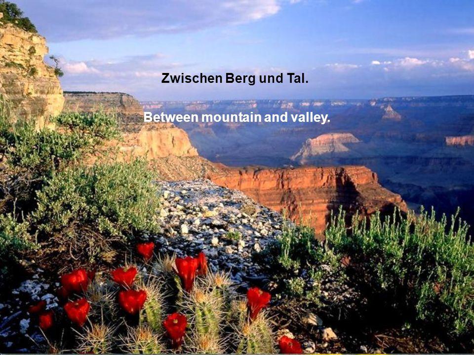 Zwischen Berg und Tal. Between mountain and valley.