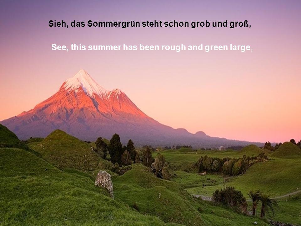 Sieh, das Sommergrün steht schon grob und groß, See, this summer has been rough and green large,