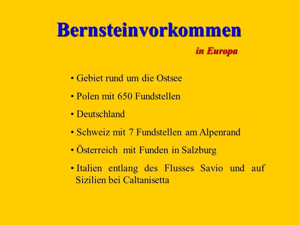 Bernsteinvorkommen in Europa Gebiet rund um die Ostsee Polen mit 650 Fundstellen Deutschland Schweiz mit 7 Fundstellen am Alpenrand Österreich mit Funden in Salzburg Italien entlang des Flusses Savio und auf _Sizilien bei Caltanisetta
