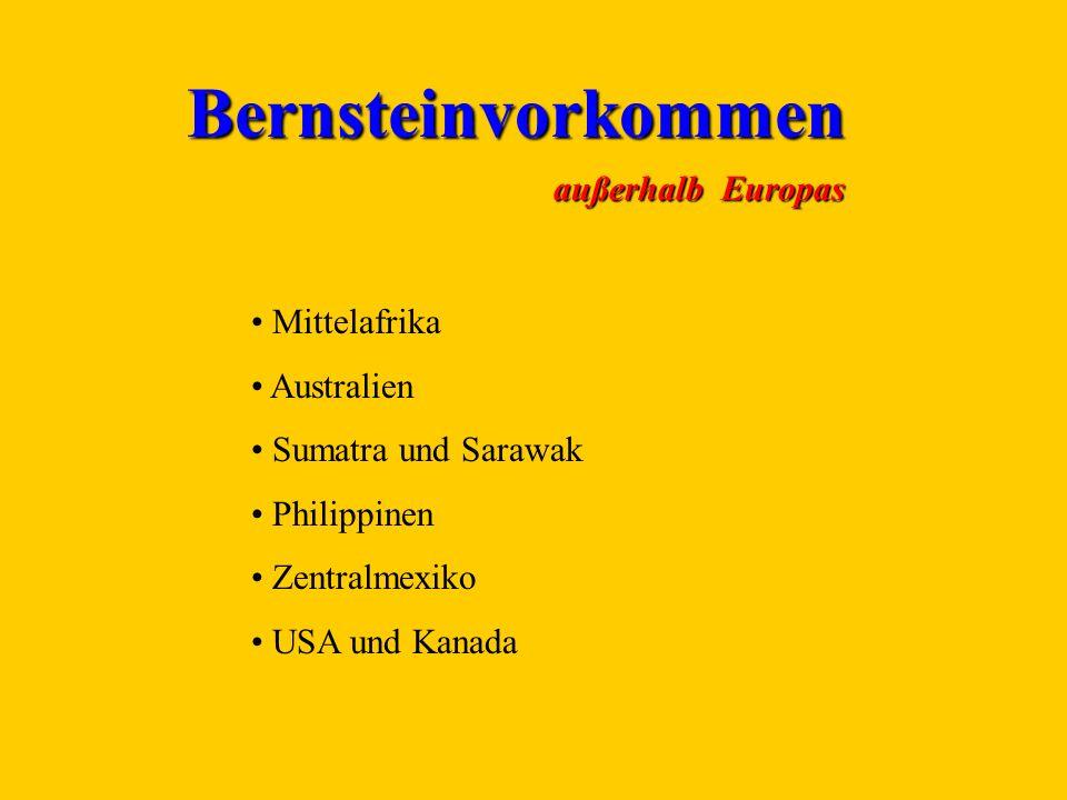 Bernsteinvorkommen außerhalb Europas Mittelafrika Australien Sumatra und Sarawak Philippinen Zentralmexiko USA und Kanada