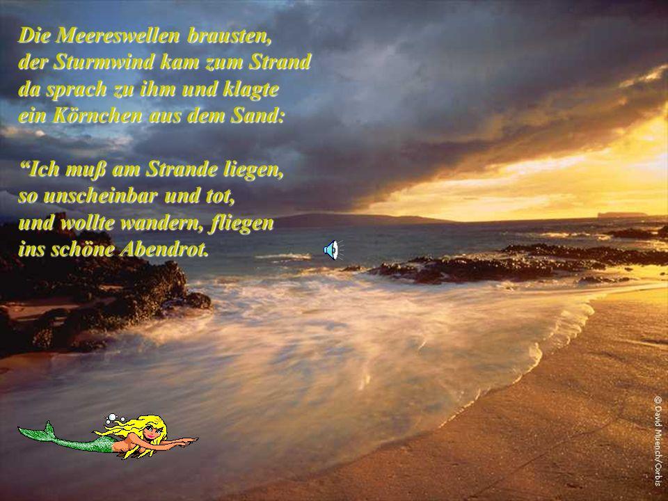 Die Meereswellen brausten, der Sturmwind kam zum Strand da sprach zu ihm und klagte ein Körnchen aus dem Sand: Ich muß am Strande liegen, so unscheinbar und tot, und wollte wandern, fliegen ins schöne Abendrot.