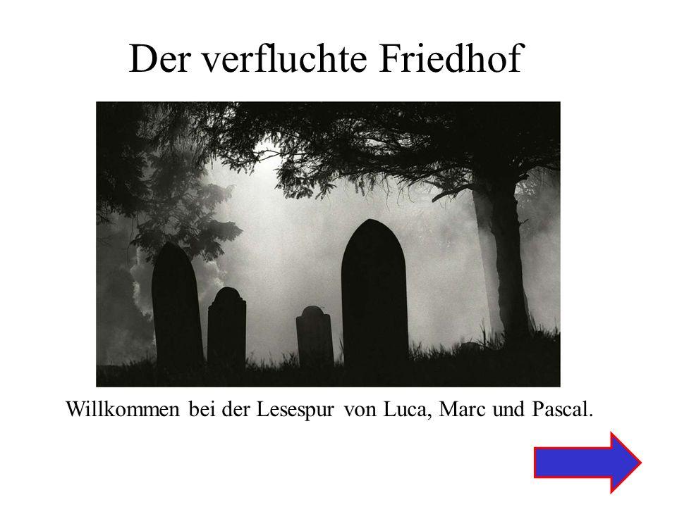 Der verfluchte Friedhof Willkommen bei der Lesespur von Luca, Marc und Pascal.