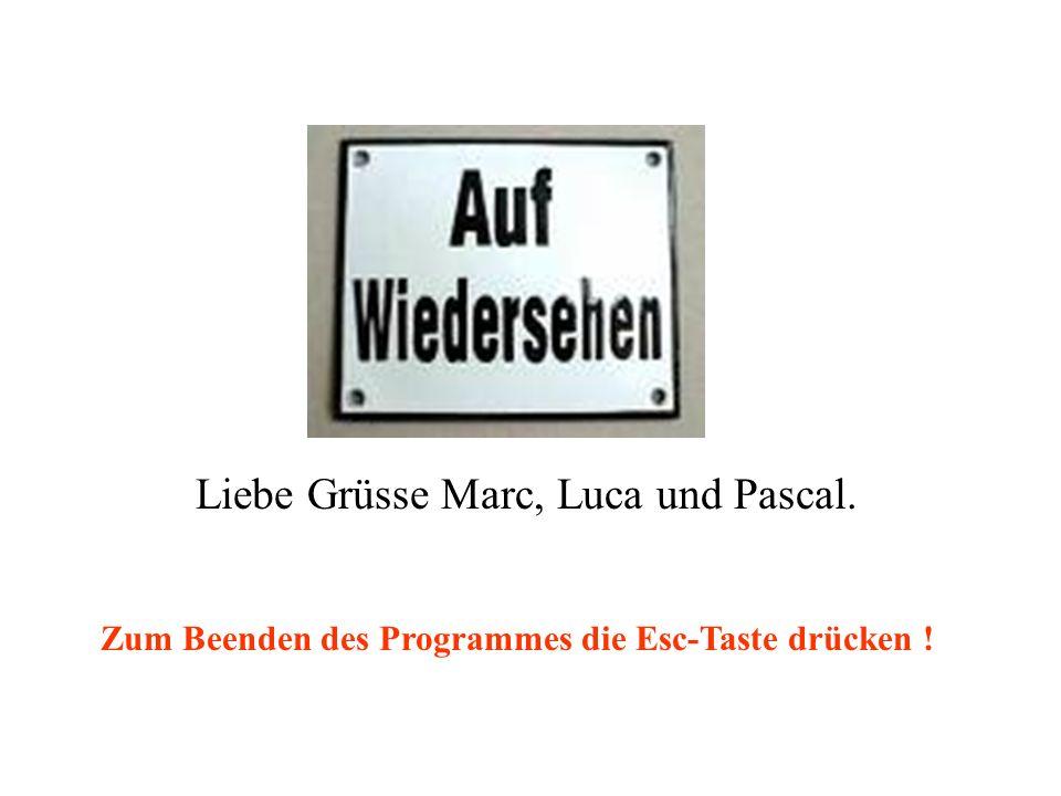 Liebe Grüsse Marc, Luca und Pascal. Zum Beenden des Programmes die Esc-Taste drücken !