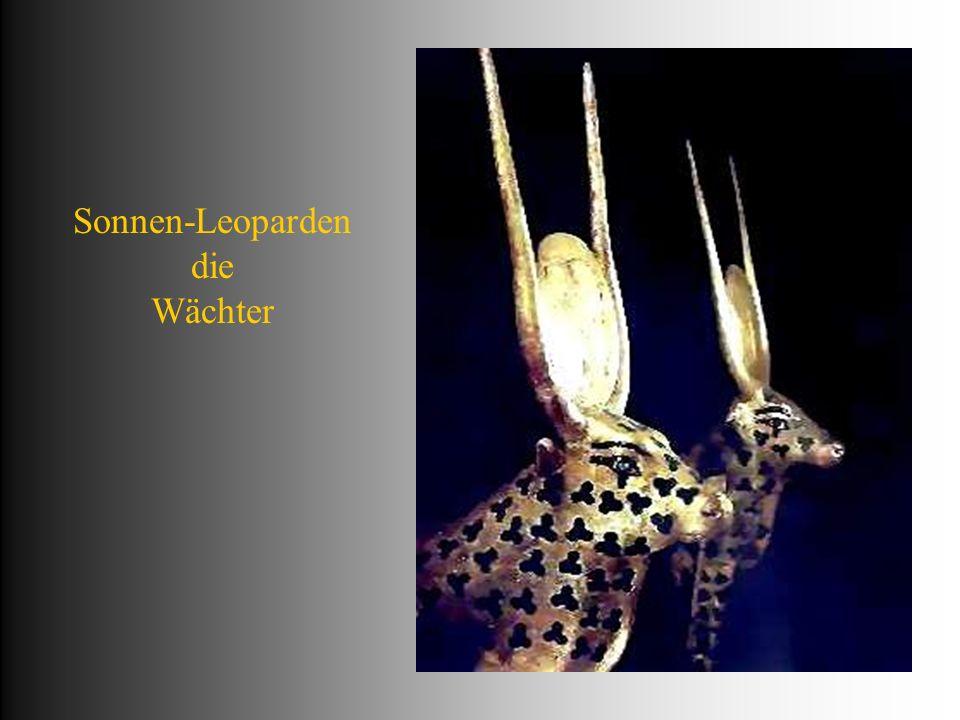 Sonnen-Leoparden die Wächter