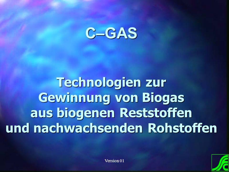 Version 01 C–GAS Technologien zur Gewinnung von Biogas aus biogenen Reststoffen und nachwachsenden Rohstoffen