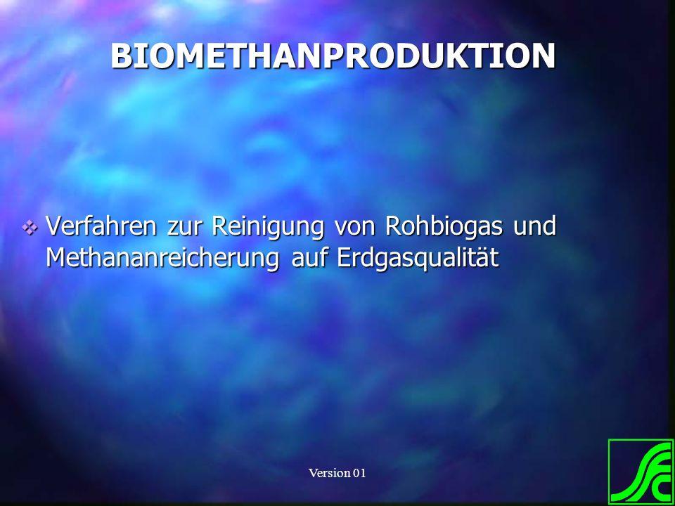 Version 01 BIOMETHANPRODUKTION Verfahren zur Reinigung von Rohbiogas und Methananreicherung auf Erdgasqualität Verfahren zur Reinigung von Rohbiogas u